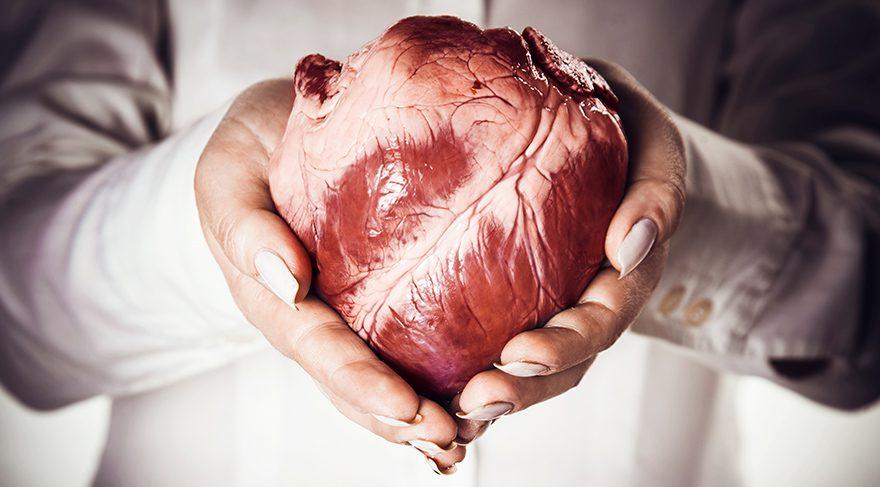 Türkiye'de organ nakli dünyadakinin tersine işliyor