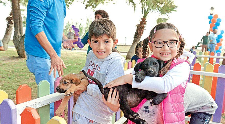 Sokak hayvanlarına özel festival