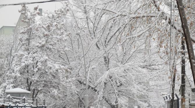Doğu'da 500 köy yolu kardan kapalı