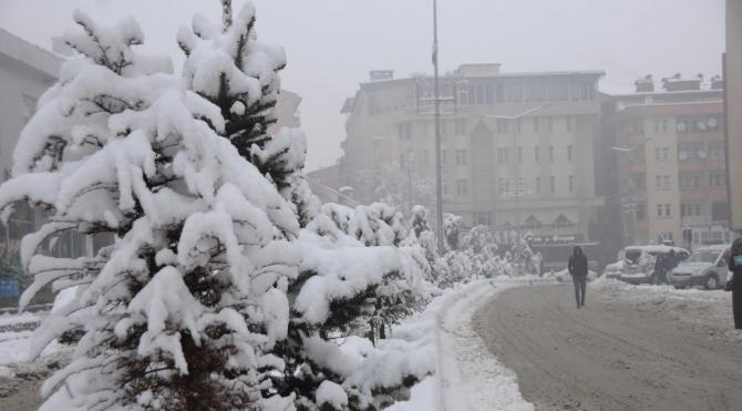 Hakkari kent merkezine mevsimin ilk karı yağdı
