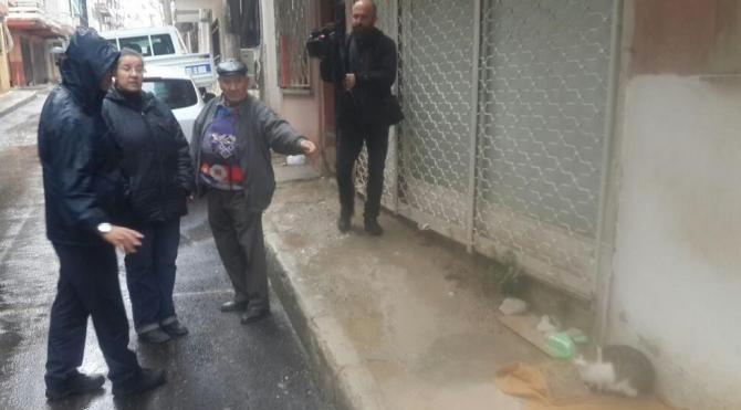 Sokakta kedi besleme kavgası 2