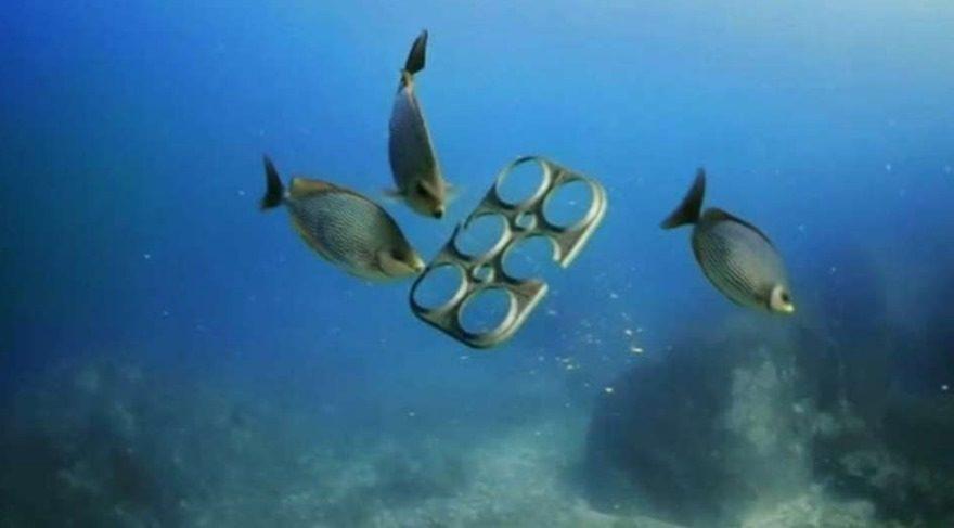 Bilim insanları araştırdı: Deniz ürünü tüketiyorsanız binlerce plastik parçası yiyorsunuz demektir