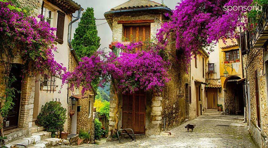 Provence yaşam tarzıyla ilgili 7 muhteşem gerçek!