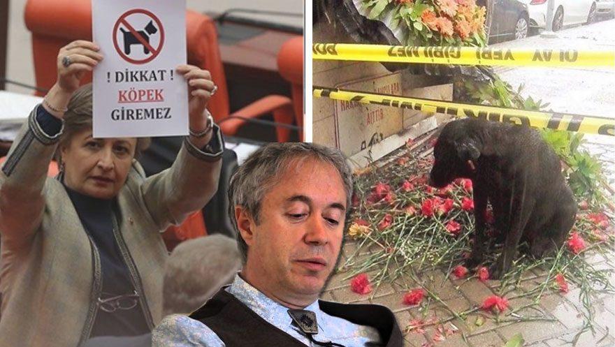 Metin Uca, Meclis'te açılan 'köpekler giremez' pankartına tepki gösterdi