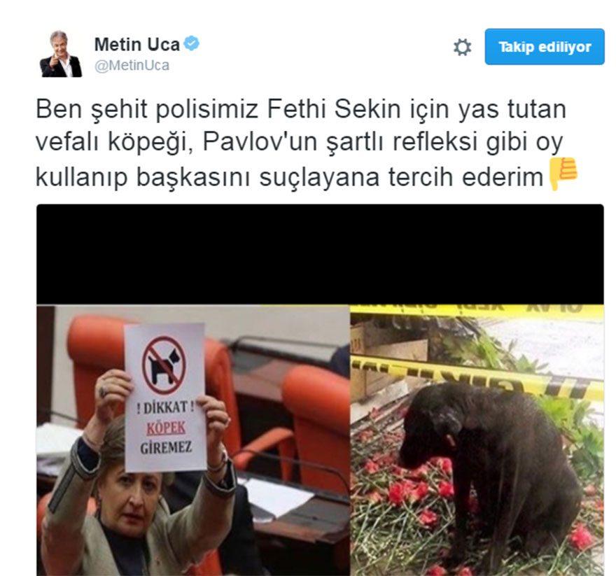 metinic