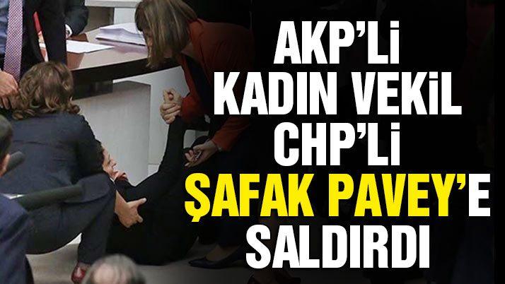 AKP'li kadın vekil CHP Milletvekili Şafak Pavey'e saldırdı