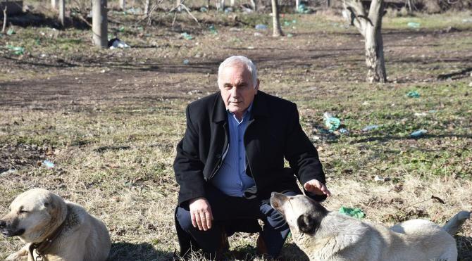 Köpeğini araca bağlayarak çeken sürücüye 526 lira ceza