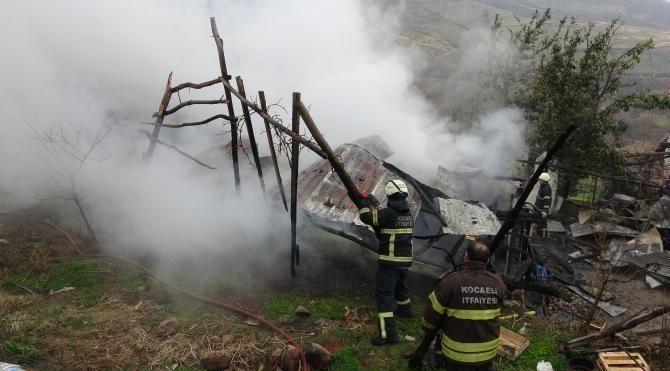 Yangından hayvanlar son anda kurtarıldı