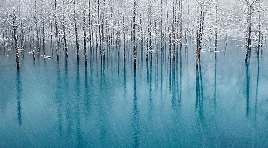 Fotoğraf: Kent Shiraishi