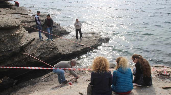 Özdereliler'e Akdeniz foku sürprizi