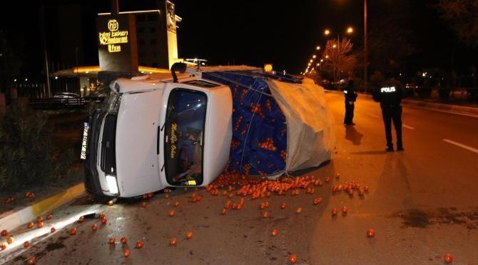 Hapşıran sürücü kamyoneti devirdi