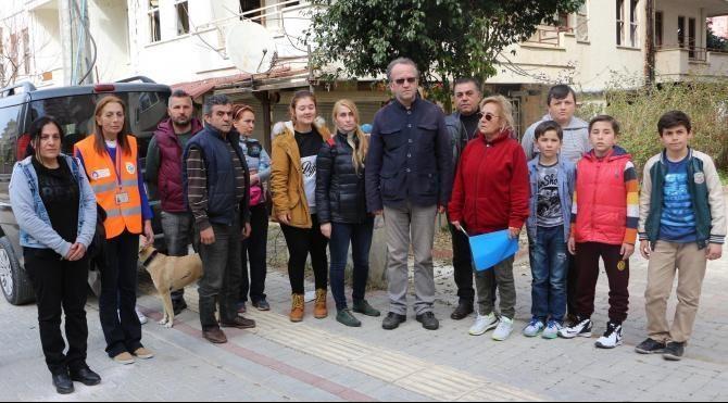 Alanya'da 30 kedi katledildi (2)