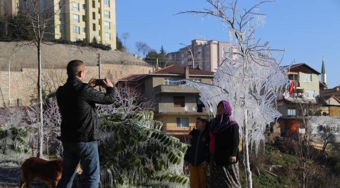 İzmit'teki ağaçlar buz tuttu