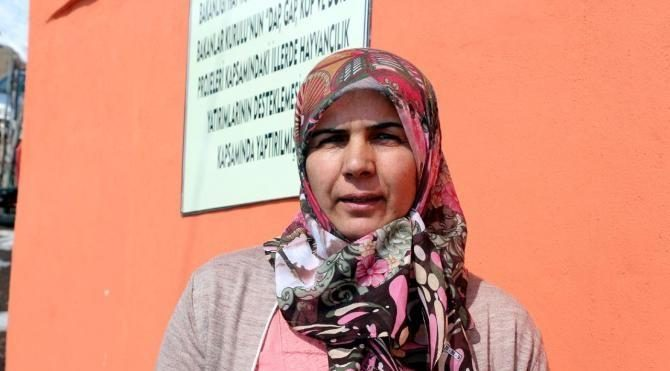 Bingöllü kadın girişimci 3 ülkeden 30 büyükbaş hayvan aldı