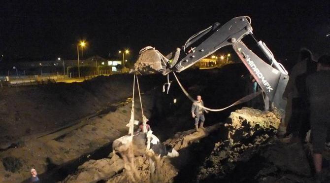 Zonguldak'ta inek kurtarma operasyonu