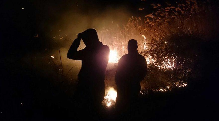 Bursa'da sazlık alanda yangın