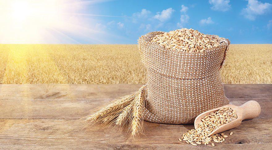 Buğday ile diyabet ilişkisine dikkat!
