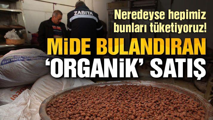 Fare ve böceklerin gezdiği ürünleri 'organik' diye satıyorlarmış