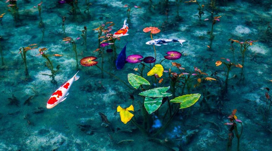 Japonya'nın Monet tablolarını andıran gölü