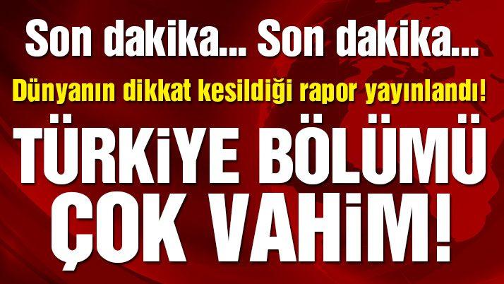 Son dakika... Af Örgütü: OHAL döneminde Türkiye'deki muhalefete baskı arttı