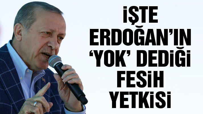 İşte Erdoğan'ın 'yok' dediği fesih yetkisi