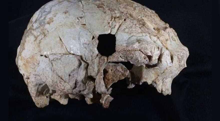 Portekiz'de 400 bin yıllık insan kafatası fosili bulundu.