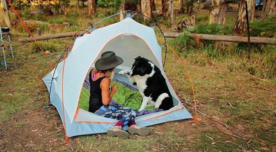 Seyahatin en güzel hali: Köpeklerle kamp