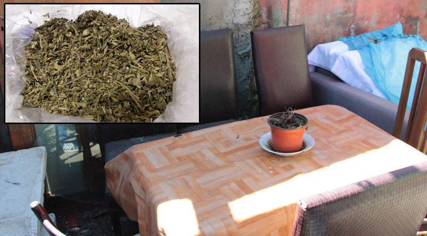 FOTO:Fmedya - Polis bonzai dolu poşetin bahçeye nasıl girdiğini araştırıyor.