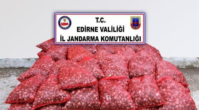 Edirne'de kaçak midye ve cep telefonu malzemesi ele geçirildi