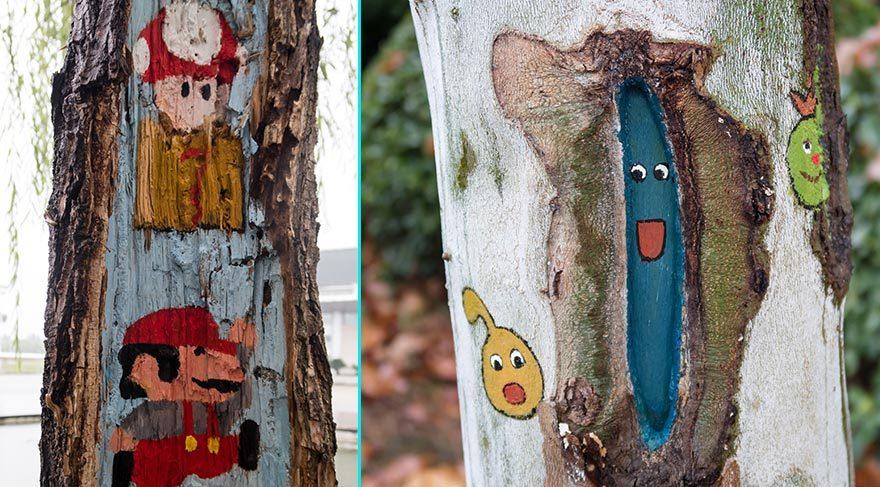 Ağaç kovuklarını renklendirdiler