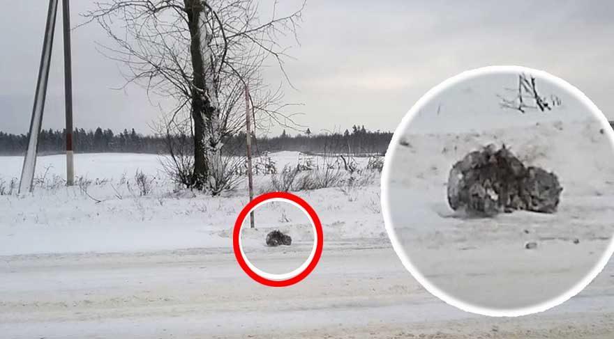 Aracıyla yolda giderken karların arasındaki siyahlık bakın ne çıktı?