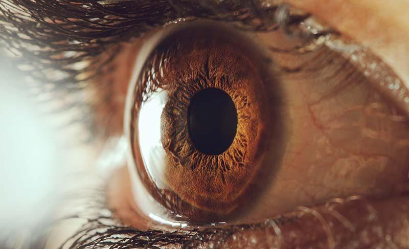 Göz sağlığını korumak için sebze ve meyve tüketimi hayati önem taşıyor