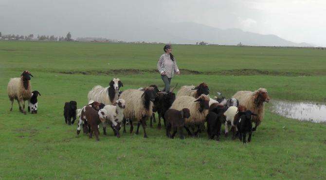 Muşlu çoban kızlar TEOG birincisi