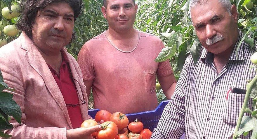 Sözcü Gazetesi muhabiri Aydın Demir tarlanın nabzını tuttu.
