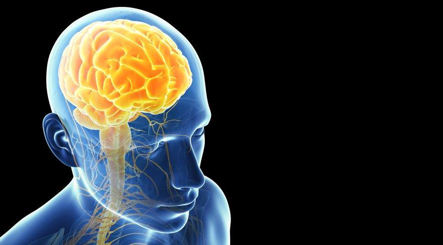 beyin sözcü ile ilgili görsel sonucu