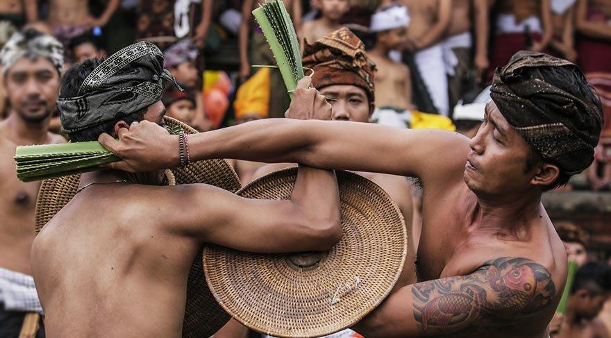 Bali'de geleneksel dikenli yaprak savaşı