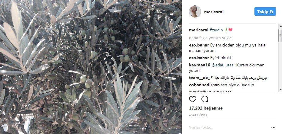 meric-aral