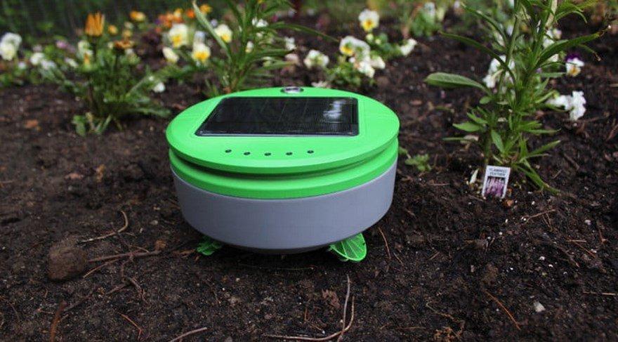 Robotlar bahçıvan oldu: İşte teknolojik bahçıvan
