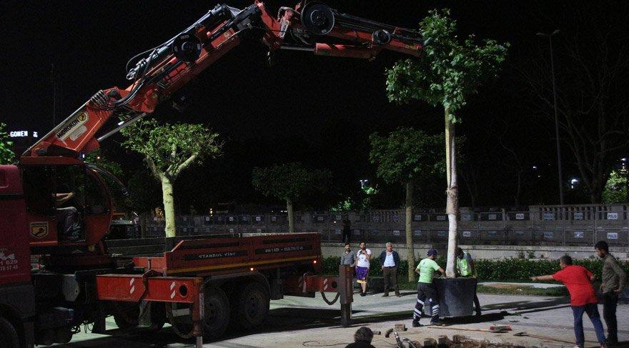Gezi'nin yıldönümünde Taksim Meydanı'ya 20 yeni ağaç