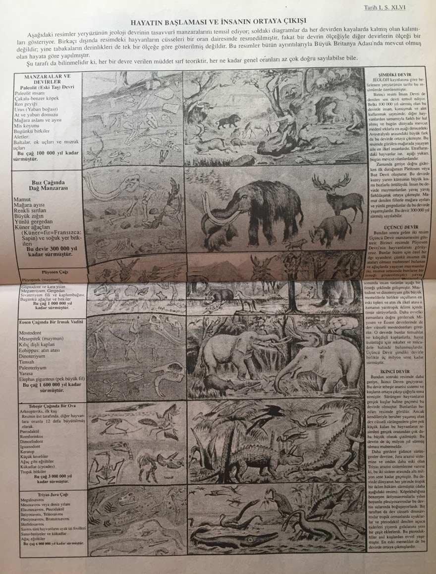 1930'larda liselerde okutulan Tarih-1 kitabının girişinde yer alan evrim tablosu...