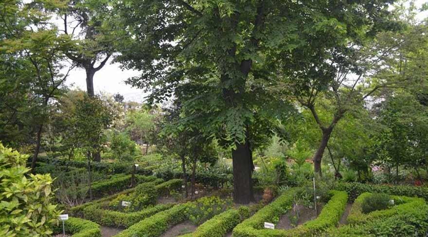 Atatürk'ün kurduğu botanik bahçesini Diyanet'e verdiler