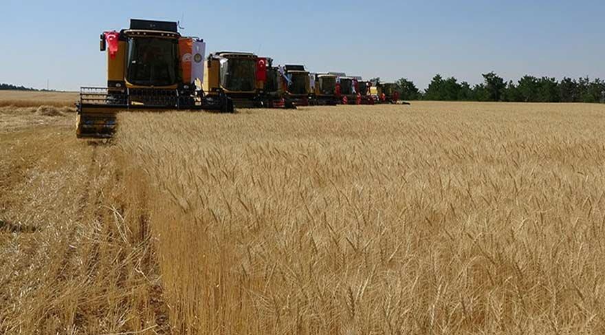 Bakan Çelik, buğday fiyatının ton başına 940 lira olarak açıkladı