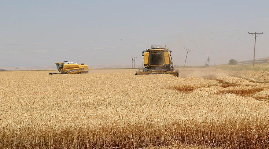 Tarım-ÜFE Haziran'da azaldı