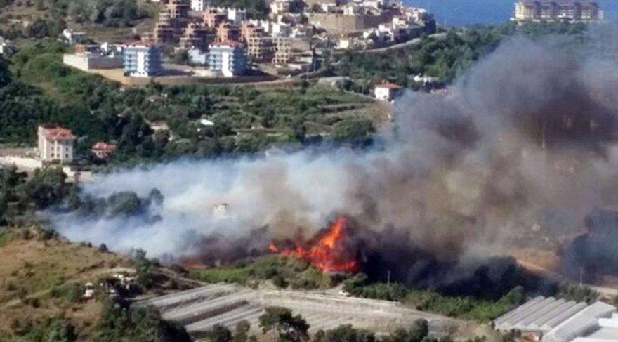 Alanya'da yine yangın çıktı!