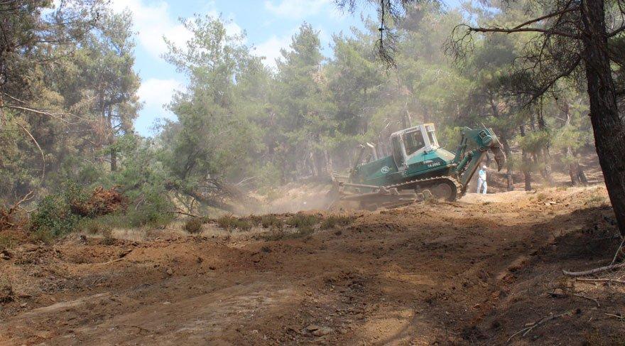 Bayındır'daki yangında kiraz ağaçları da yandı