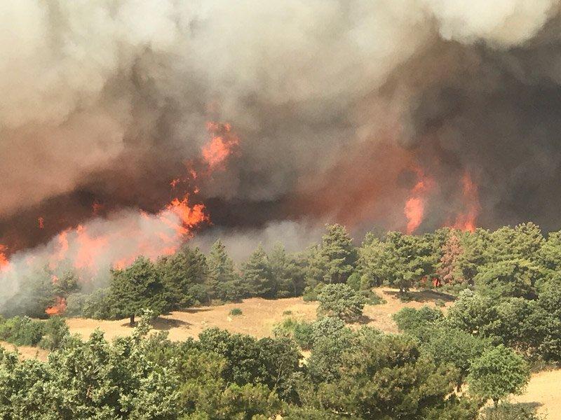 FOTO:DHA- Çanakkale'deki yangın kontrol altına alınmaya çalışılıyor.
