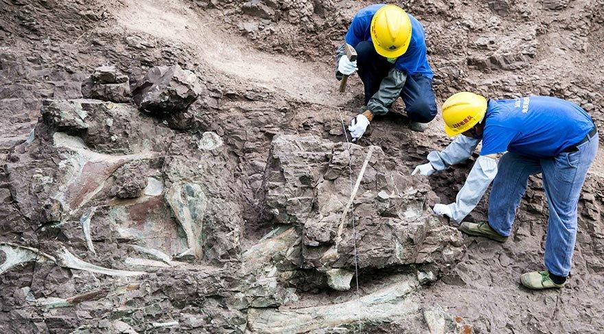 Fosil duvarından dinozor da çıktı