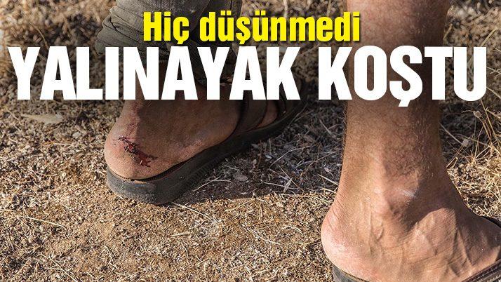 Bakan Veysel Eroğlu: Menderes'te bin hektar alan zarar gördü