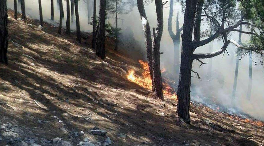 Mersin ve Suriye sınırında orman yangını: Mahalleler boşaltıldı