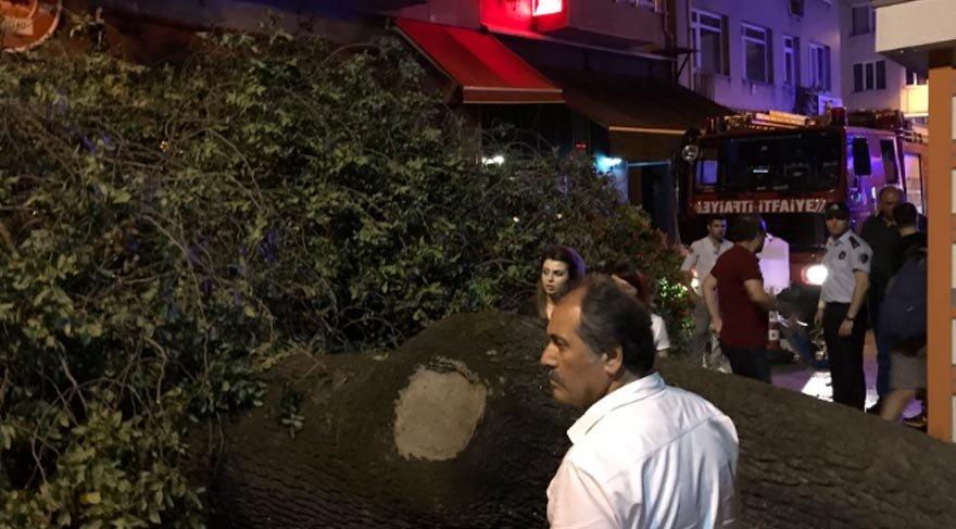 Kadıköy'de asırlık ağaç kafenin üzerine devrildi: 2 yaralı